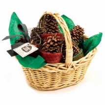 Pine Cone Fire Starter In Willow Basket